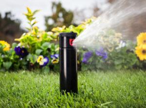 Sprinkler system by flowerbed